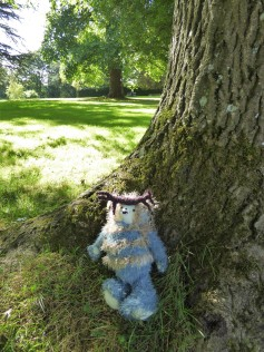 Nimakim likes the lovely old trees at Mottisfont.
