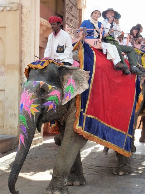 A painted elephant in the Amber Fort. Festival was taking notes on the designs.