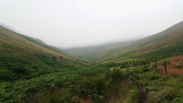 Saturday started misty and murky as we made our way up Crowden Clough which ascends Kinder Scout. Bunny was soggy but excited to be climbing the highest mountain in The Peak District.