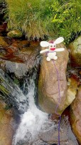 Bunny can never resist a good waterfall.