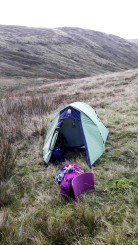 With the walking done for the day, we setup camp in a little gully just off Harter Fell. There wasn't another human being in sight, which was nice. We had our own little private stream, and all the sheep we could eat.
